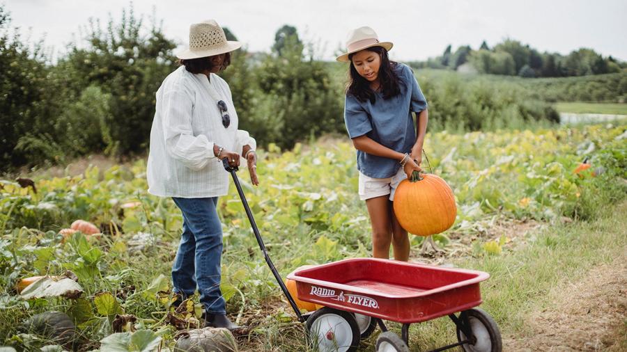 Eco farming